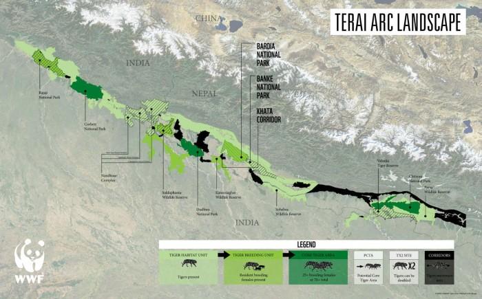 Terai landscape tigers LDF